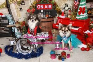 ライブハウス・クリスマスVr